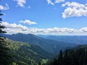 Mallard Larkins Weekend Hike @ Smith Ridge Trailhead | Idaho | United States