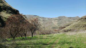 Redbird Creek Trail & messy, zesty Waha Burger! @ Redbird Canyon Trail | Idaho | United States