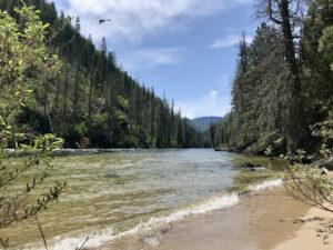 Selway River Day Hike 2 @ Selway River Trail | Kooskia | Idaho | United States